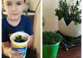 Ogródek Piotrusia